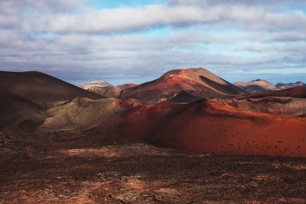 Canary Islands - Vegan Travel Guide - Photo: Brix and Maas for Antagonist