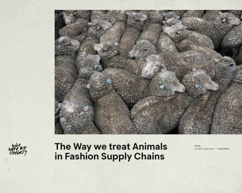 Fashion Revolution Week – Who made my clothes? The impact of fashion supply chains on animals – Antagonist