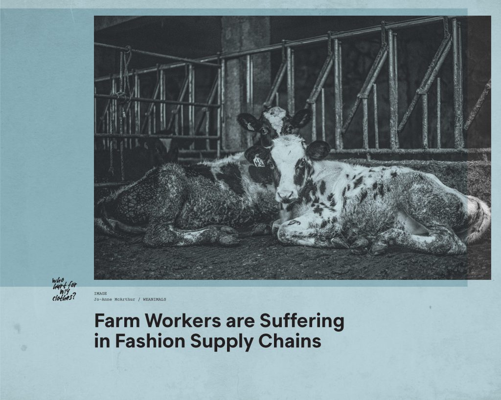 Fashion Revolution Week – Who hurt for my clothes? The impact of animal supply chains in fashion on farm workers – Antagonist