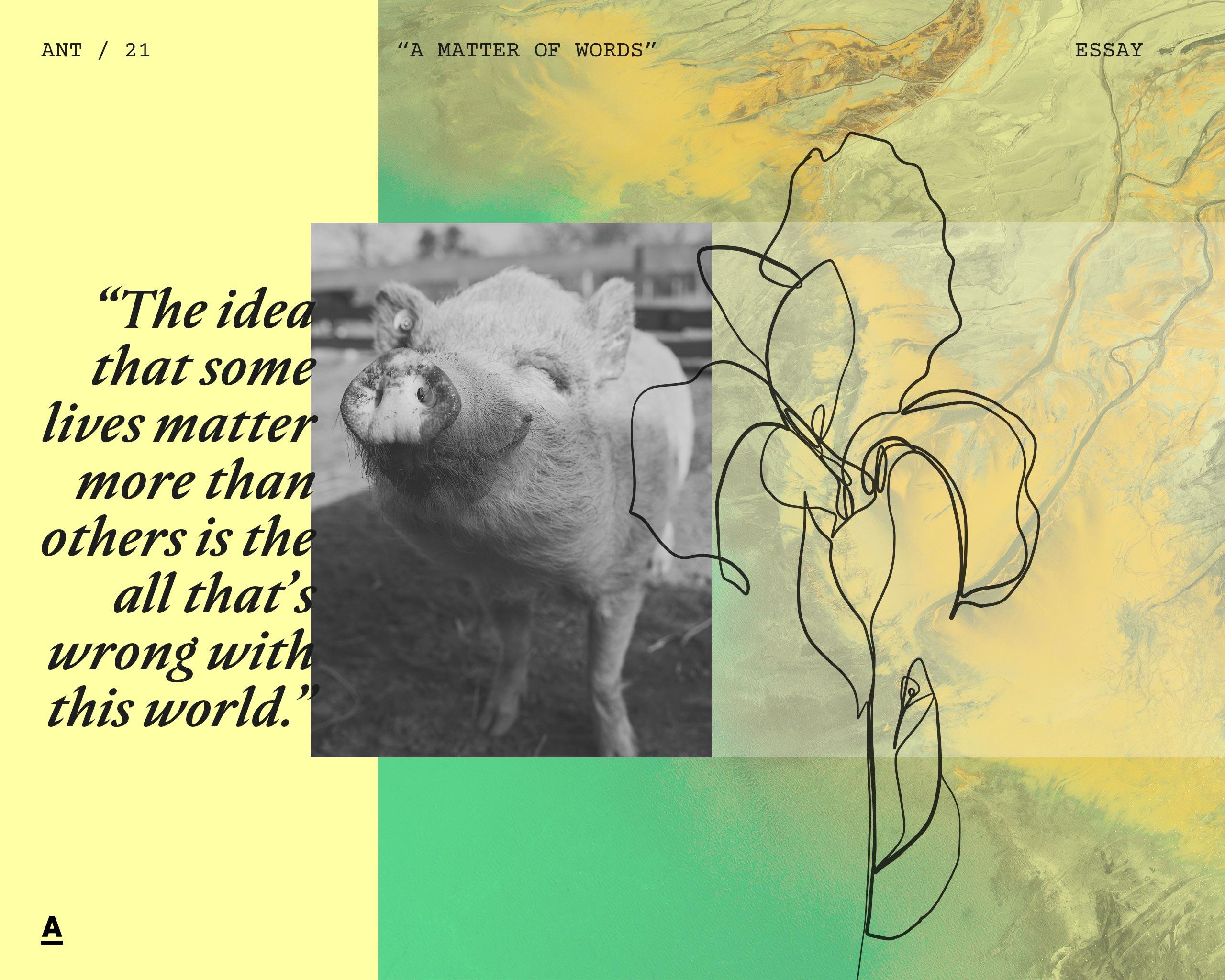 A Matter of Words – Essay - Antagonist